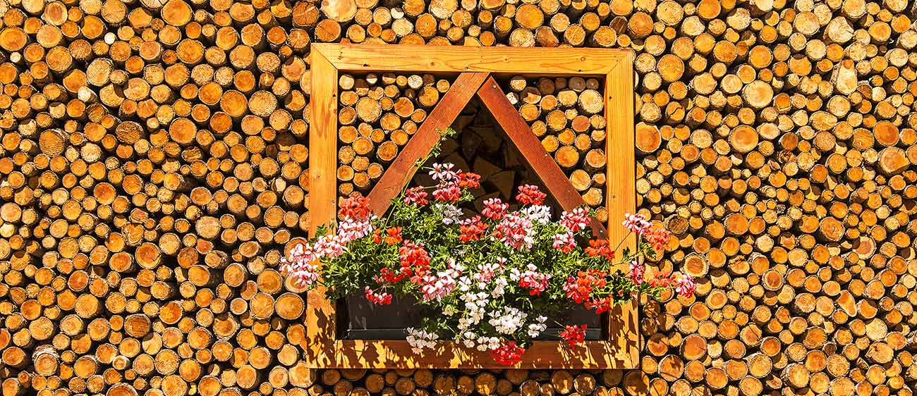 Wall made of wooden logs and geraniums on the balcony