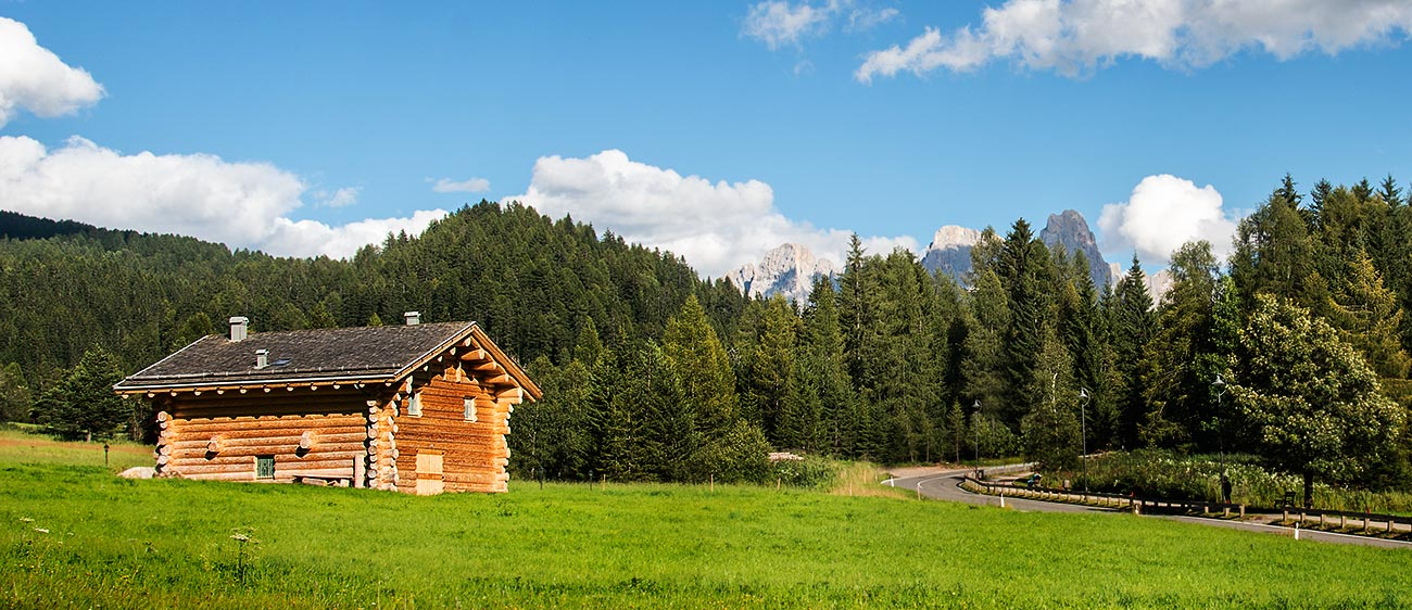 A wooden hut in the village of Bellamonte in Val di Fiemme