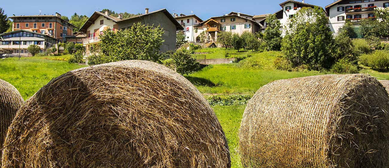 Hay bales and some houses in the background